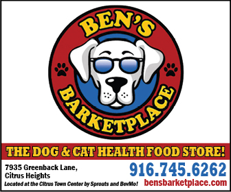 Bens Barketplace Ad 16003