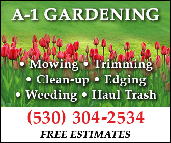 A-1 Gardening Ad 3