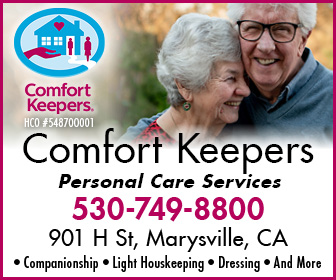 Comfort Keepers Ad 176