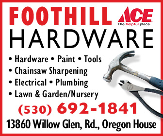 Foothill ACE Hardware Ad 2