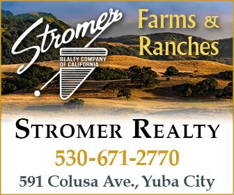 Stromer Realty Ad 175
