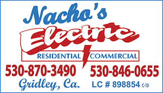 Nacho Elec Ad 421609