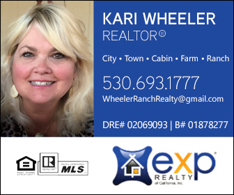 Kari Wheeler Realty Ad 3981